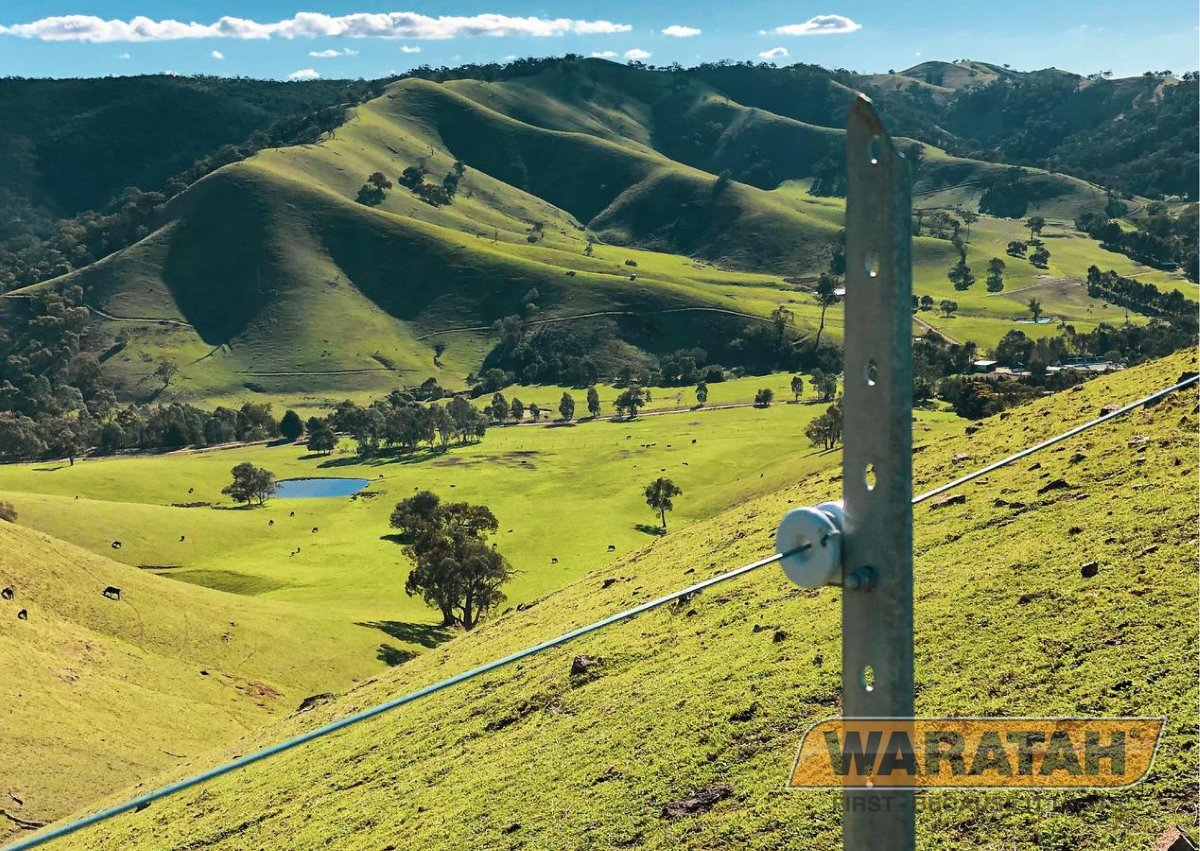 Permelec Longlife Blue Wire | Electric Fence Wire | Waratah Wire