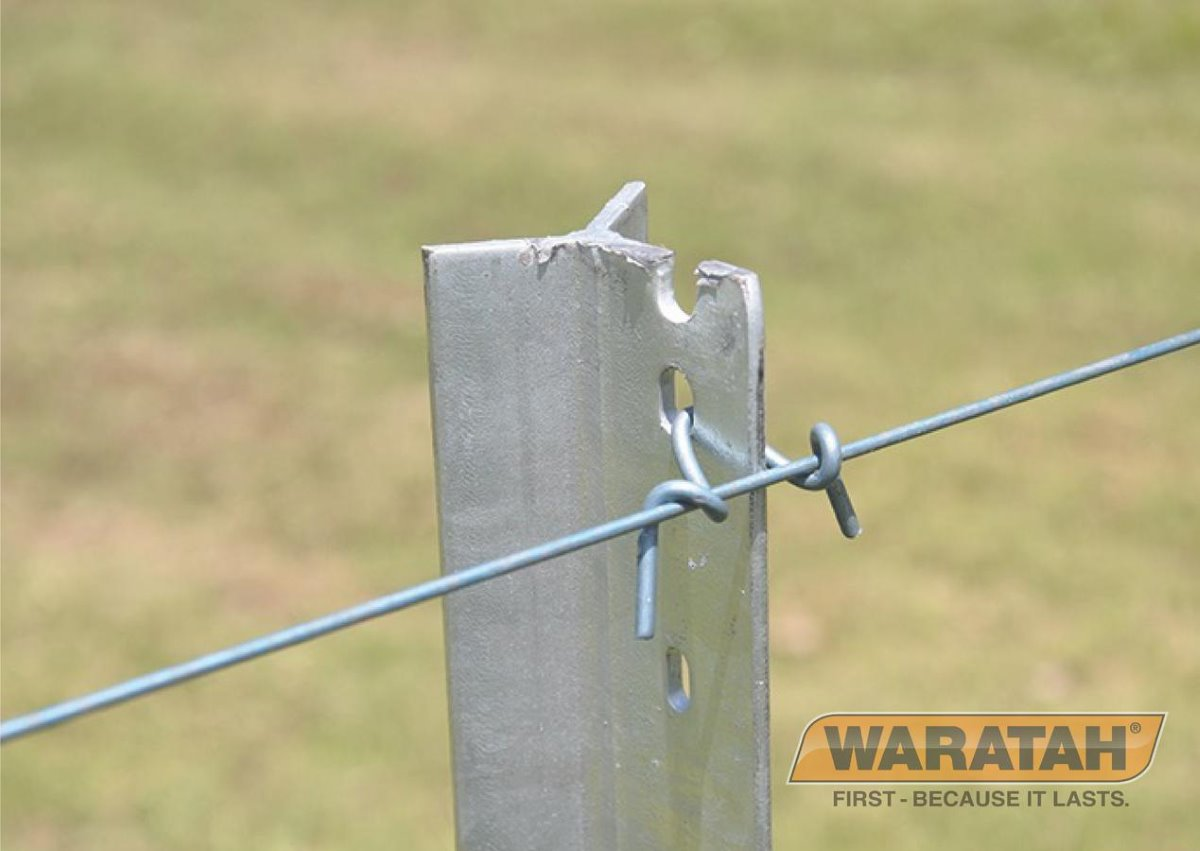 longlife Blue star post clips | Waratah Fencing accessories