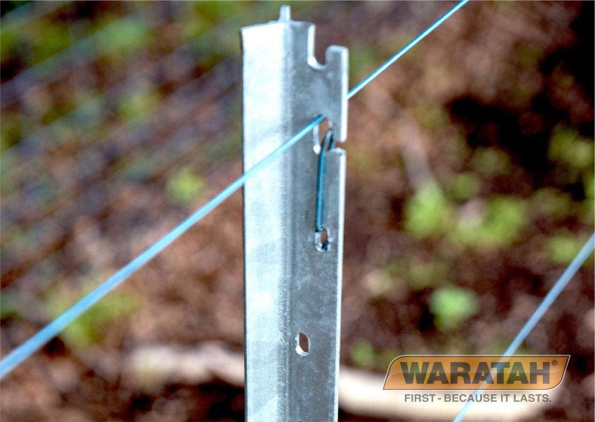 Waratah Blue Latch Star Posts | Waratah Posts