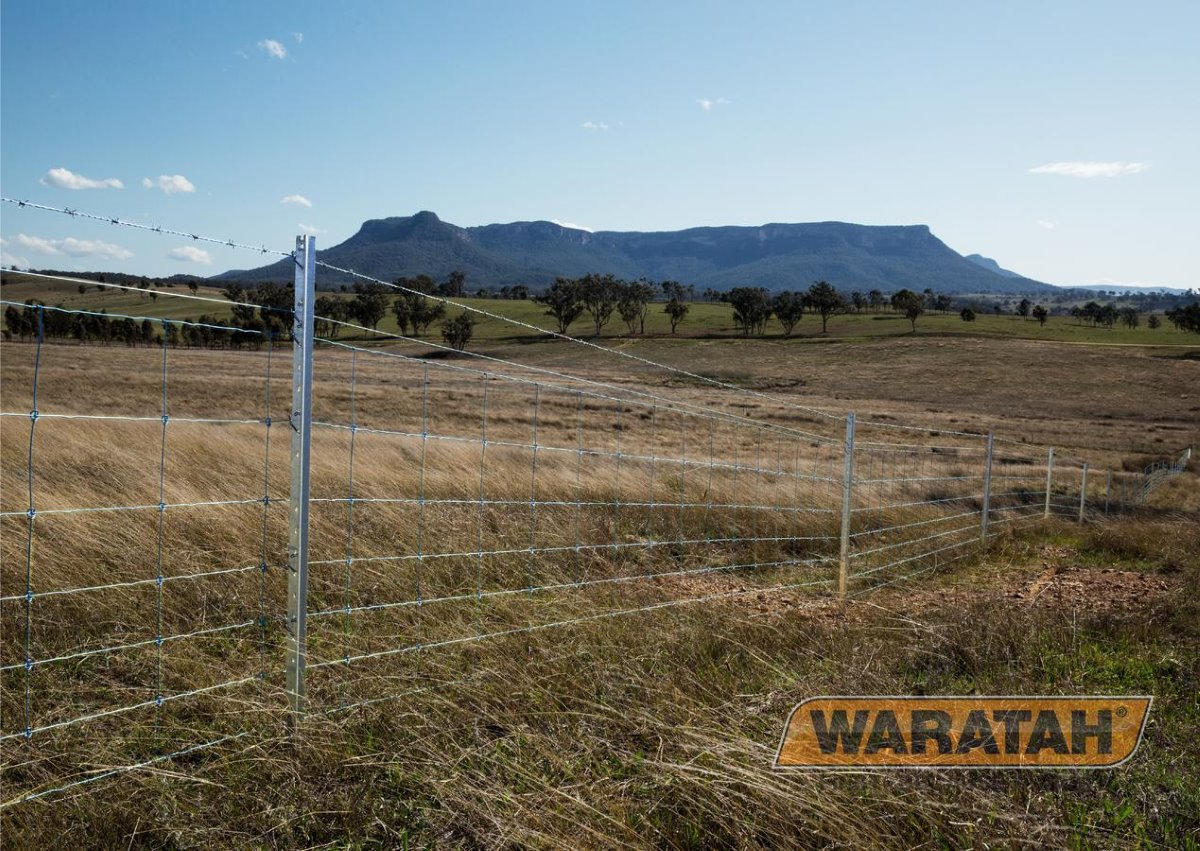 Stocklock Longlife Blue | Waratah Prefabricated fencing